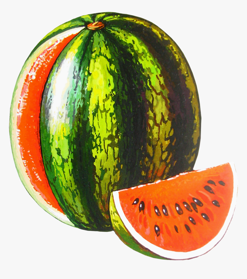 Watermelon Png Free Download Watermelon Melon Transparent Background Png Download Kindpng Watermelon is a juicy fruit as well as sweet. watermelon melon transparent background