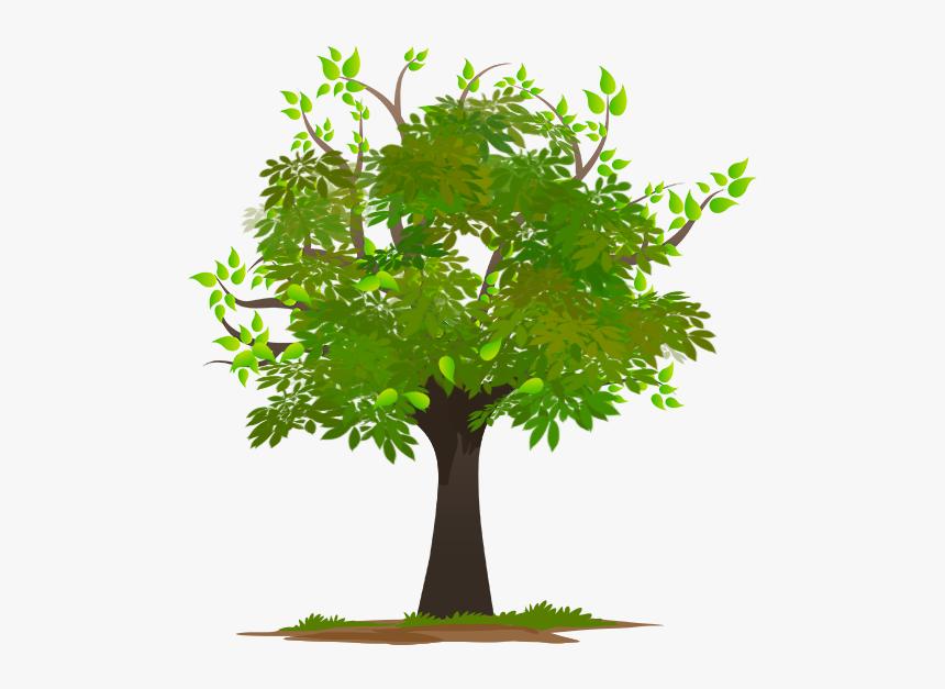 Word Duniya Sal - Family Tree Frame Png, Transparent Png, Free Download