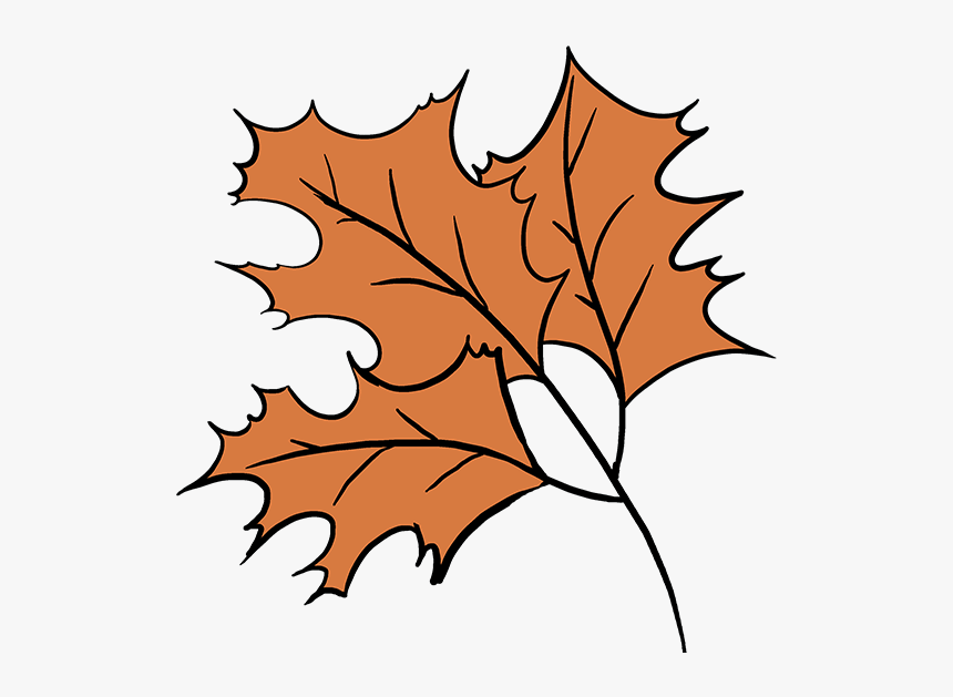 How To Draw Fall Oak Leaves Fall Drawing Easy Hd Png Download Kindpng