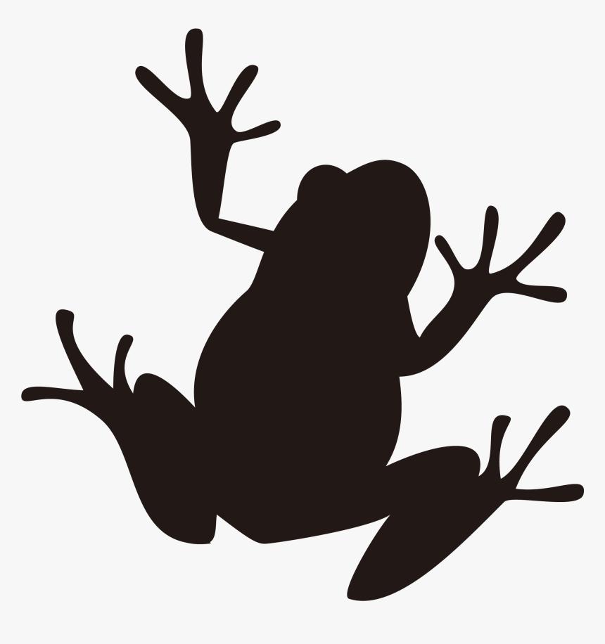 Frog Silhouette Illustration Image Amphibians - Frog Silhouette Png, Transparent Png, Free Download