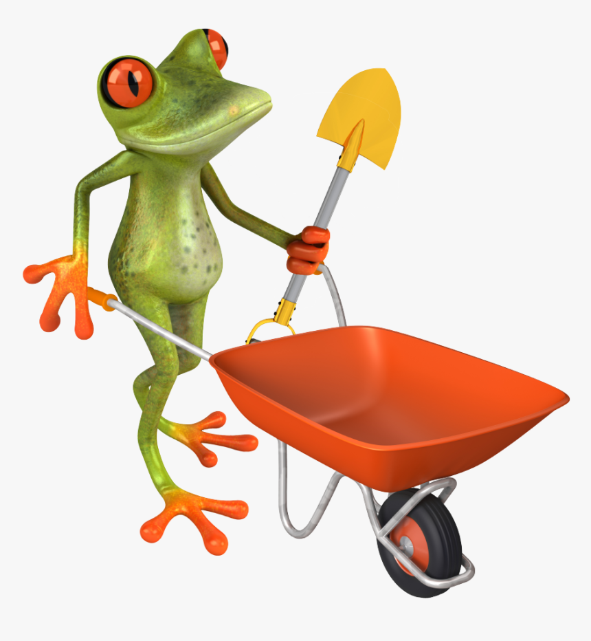 Lawn Care Frog - Red-eyed Tree Frog, HD Png Download, Free Download