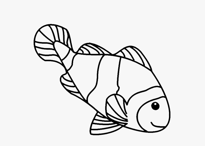 Fish Line Drawings Clown Fish Clipart Black And White Hd Png Download Kindpng