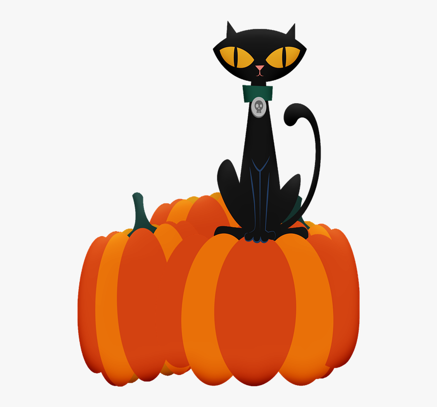 Halloween Cat, Halloween, Ghosts, Skulls, Pumpkins - Blavk Cat Pumkin, HD Png Download, Free Download