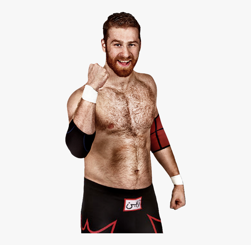 Sami Zayn Chest Hair, HD Png Download, Free Download