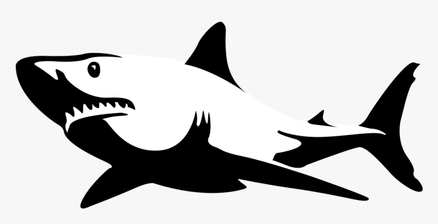 Shark Black White, HD Png Download, Free Download