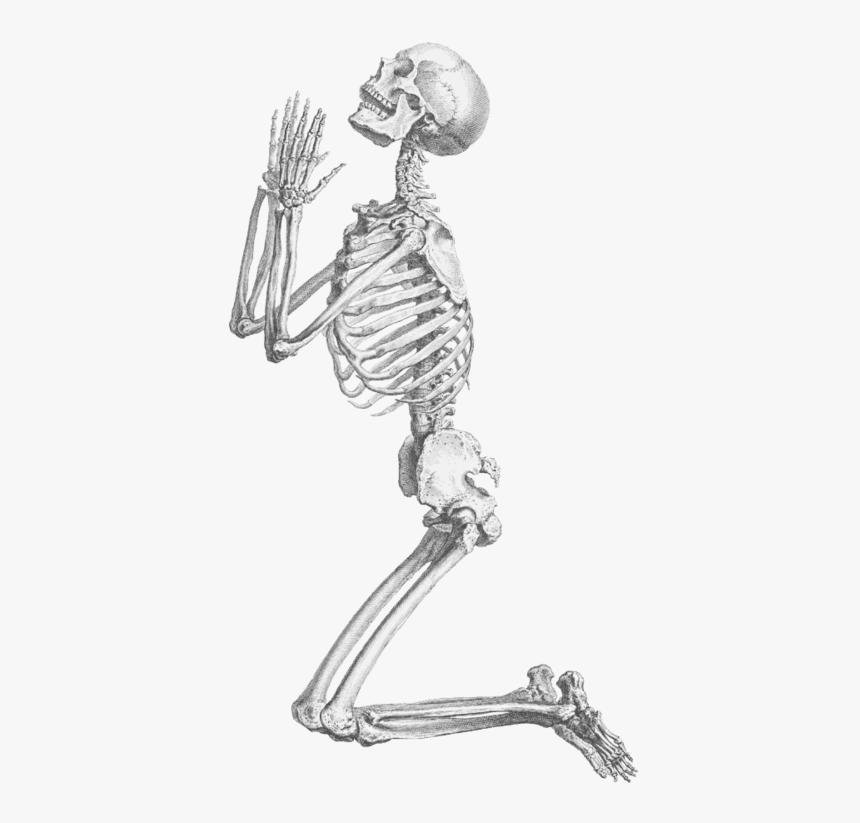 Skeleton, Skull, And Transparent Image - Praying Skeleton Png, Png Download, Free Download