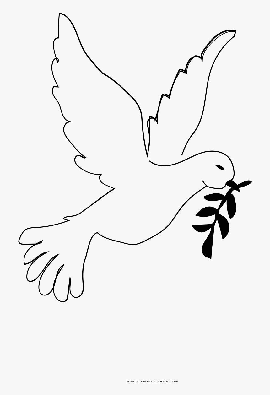 Peace Dove Coloring Page - Para Colorear Paloma De Paz Dibujo, HD Png Download, Free Download
