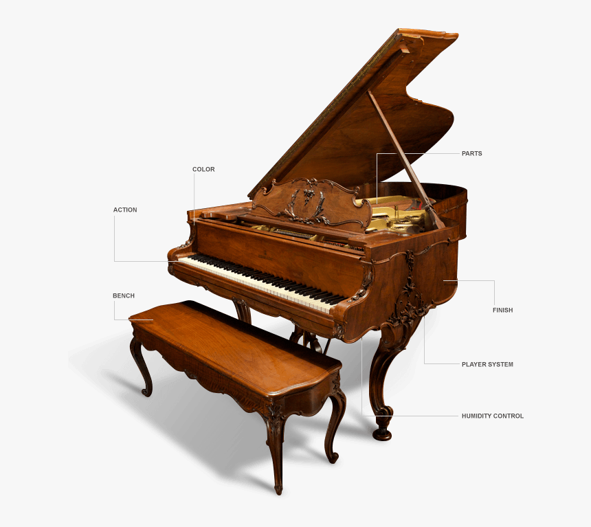 Transparent Grand Piano Clipart - Parts Of A Grand Piano, HD Png Download, Free Download