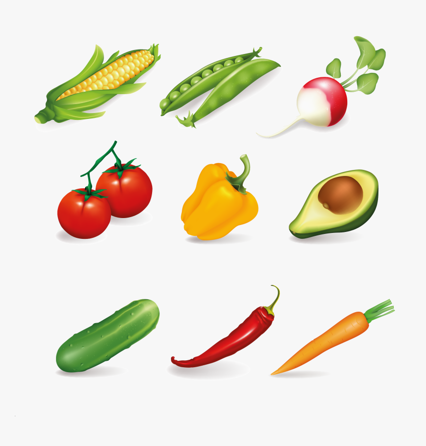 Common Vegetables, HD Png Download, Free Download