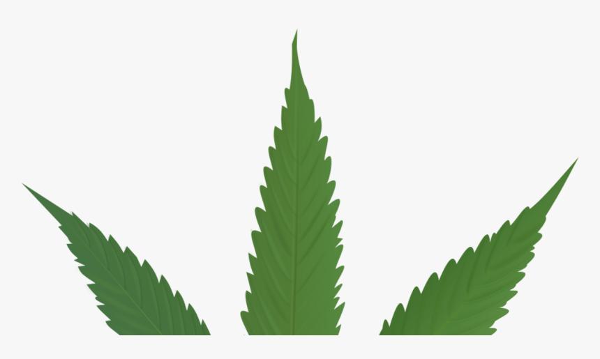 Cannabis Leaf , Png Download - Marijuana Outline, Transparent Png, Free Download
