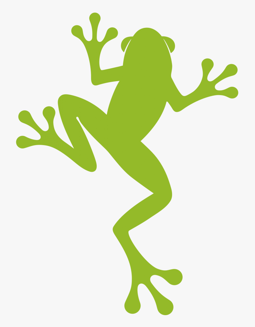 A New Look For Our Frog - Rainforest Alliance New Logo, HD Png Download, Free Download