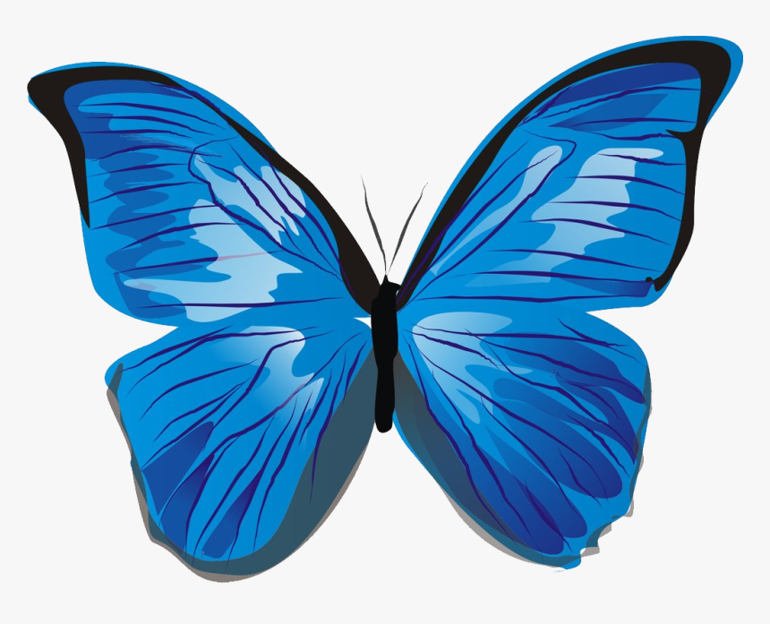 butterfly images blue butterfly clip art free free blue butterfly icon png transparent png kindpng butterfly images blue butterfly clip