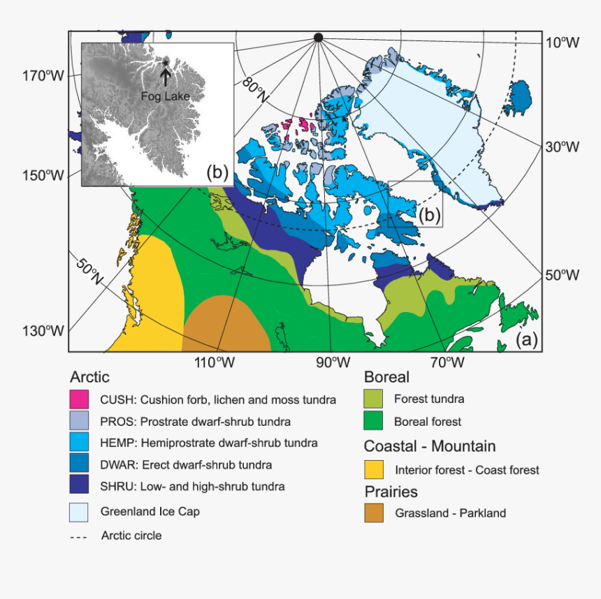 Main Vegetation Zones Of Northern North - Color Coded Map Of Canada, HD Png Download, Free Download