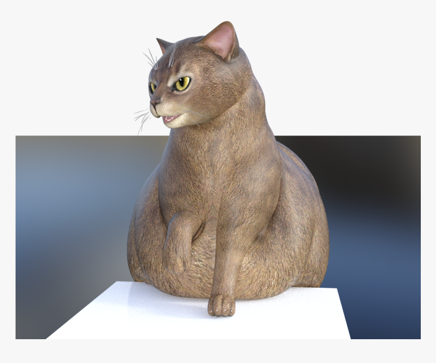 Fat Cat Is Squish , Png Download - Domestic Short-haired Cat, Transparent Png, Free Download