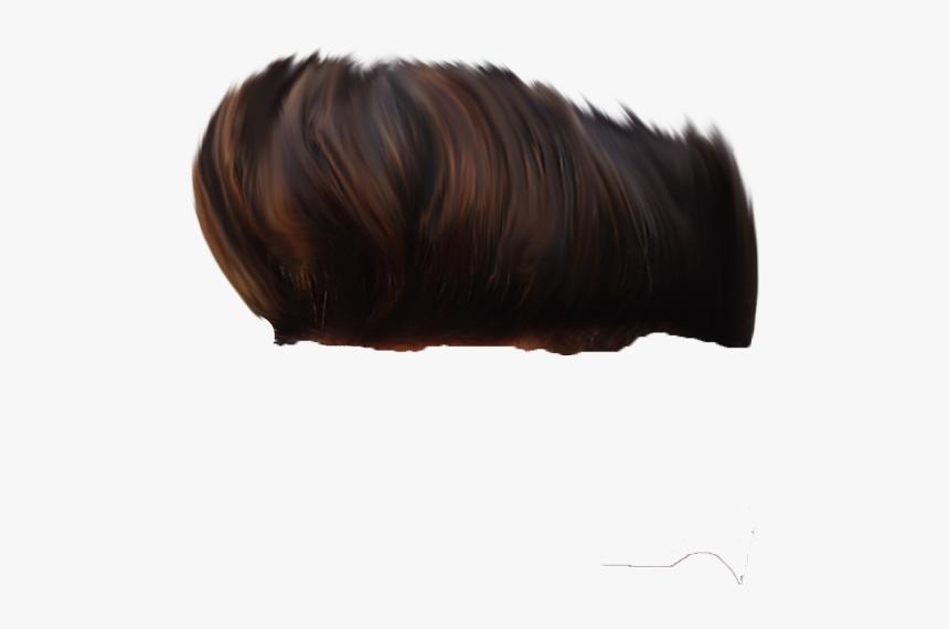 Sk Editz Hair Png, Transparent Png, Free Download