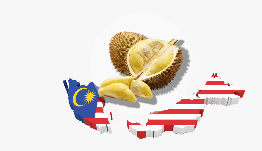 Durian Malaysia Map - Transparent Malaysia Flag Map, HD Png Download, Free Download