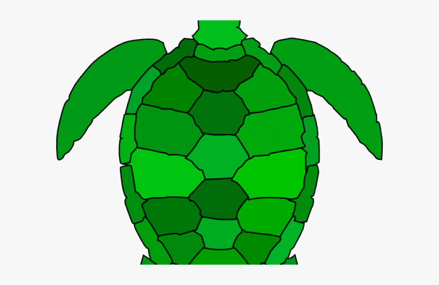 Green Turtle Cliparts - Sea Turtle Clip Art, HD Png Download, Free Download