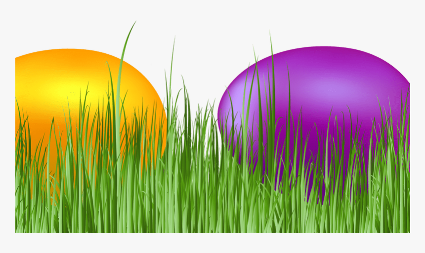 Easter Grass Eggs Png Download Image - Grass, Transparent Png, Free Download