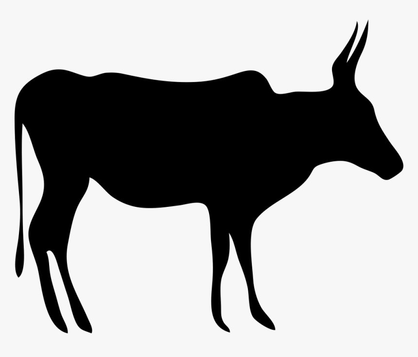 Texas Longhorn English Longhorn Beef Cattle Drawing Cow Clipart Black Hd Png Download Kindpng
