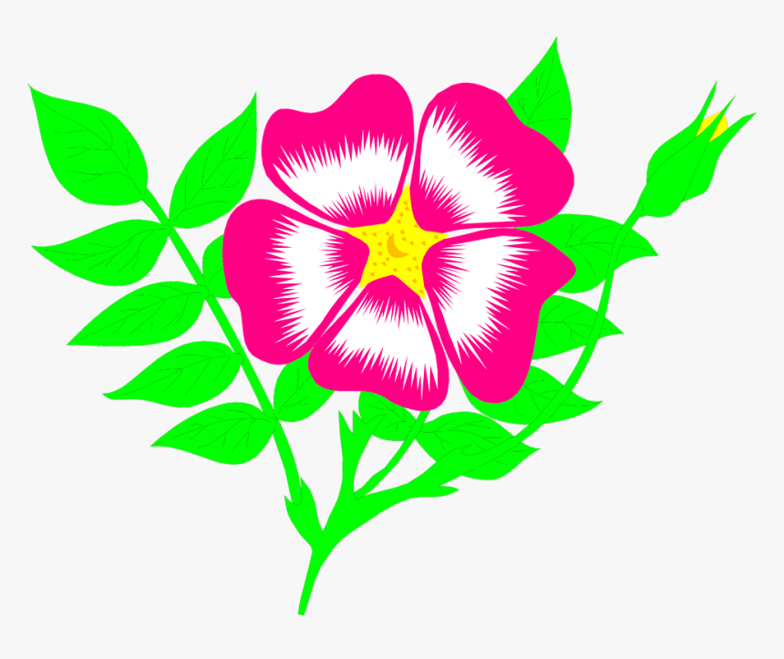 Free Illustrations Download Clip - Flower Animation Png, Transparent Png, Free Download