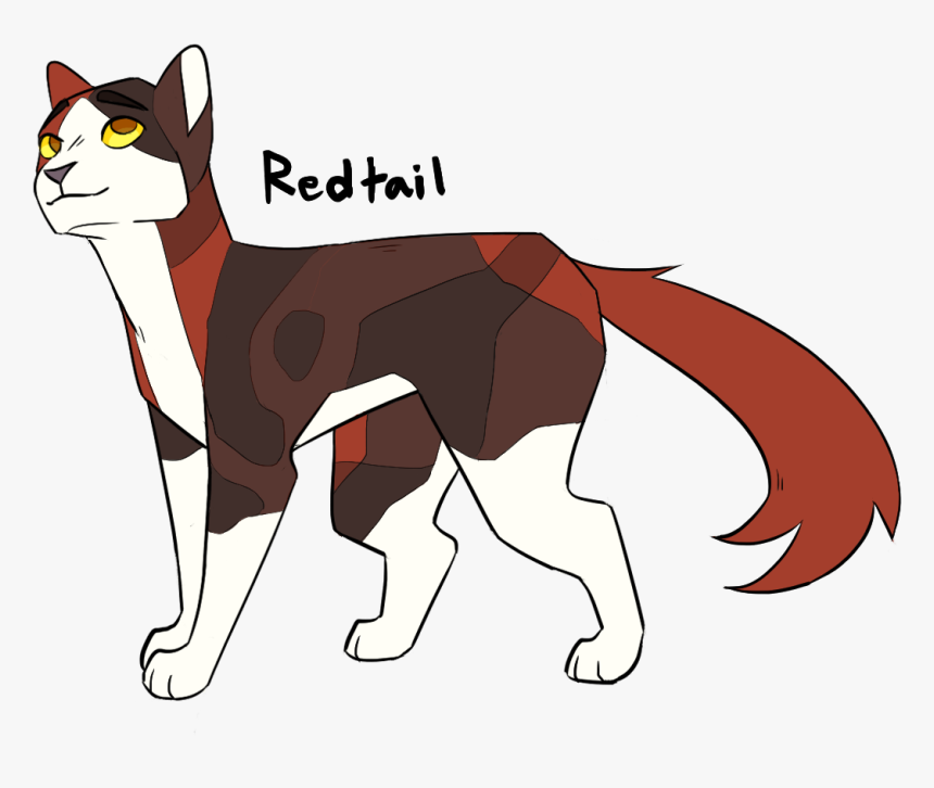 Image Redtail From Warrior Cats Hd Png Download Kindpng