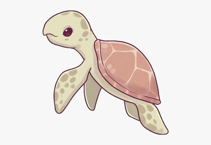 #turtle #sealife #sea #ocean #cute #kawaii #naomilord - Hawksbill Sea Turtle Drawing, HD Png Download, Free Download