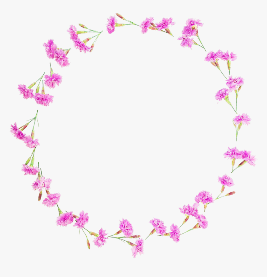 #floral #flowers #flower #round #frames #frame #borders - Transparent Background Flowers Round, HD Png Download, Free Download