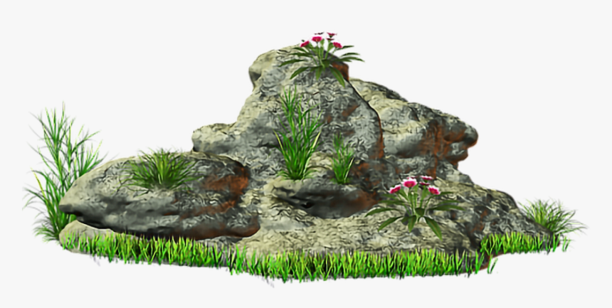#rock #stone #grass @ladymariacristina - Small Stone With Grass Png, Transparent Png, Free Download