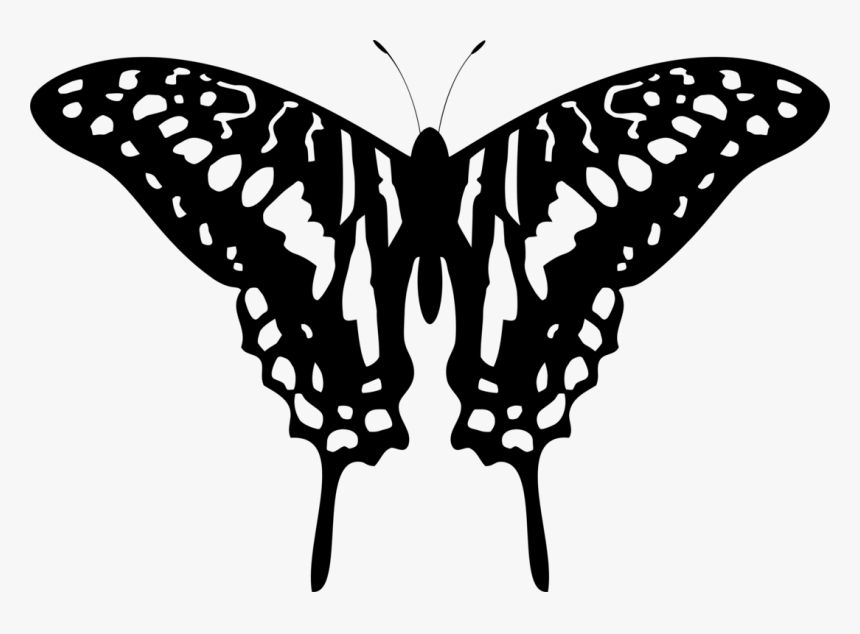 Butterfly Tattoo Designs Png Transparent Images Word How