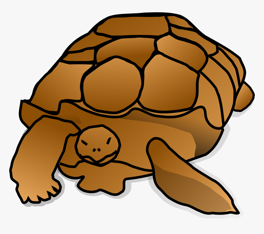 Snapping Turtle Clipart Png, Transparent Png, Free Download