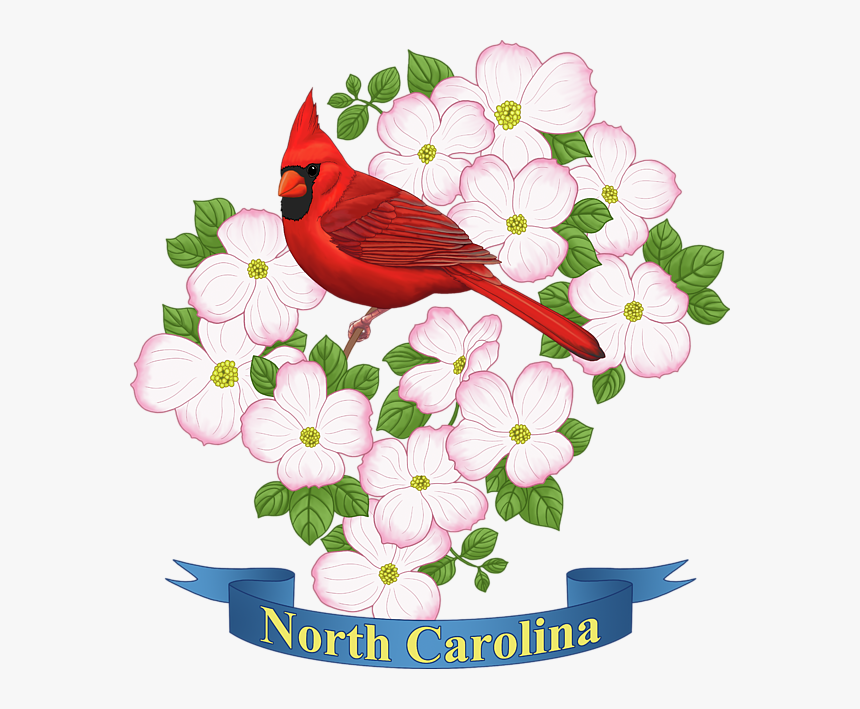 Click And Drag To Re-position The Image, If Desired - State Of North Carolina Flower, HD Png Download, Free Download