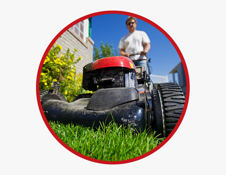 Lawn Service Bel Air Md - Lawn Care Website Layout, HD Png Download, Free Download