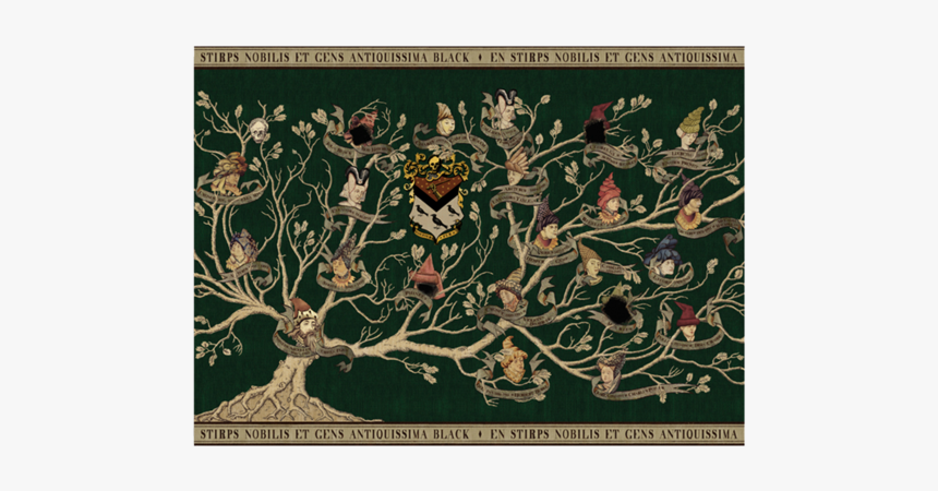Harry Potter Black Family Tree, HD Png Download, Free Download