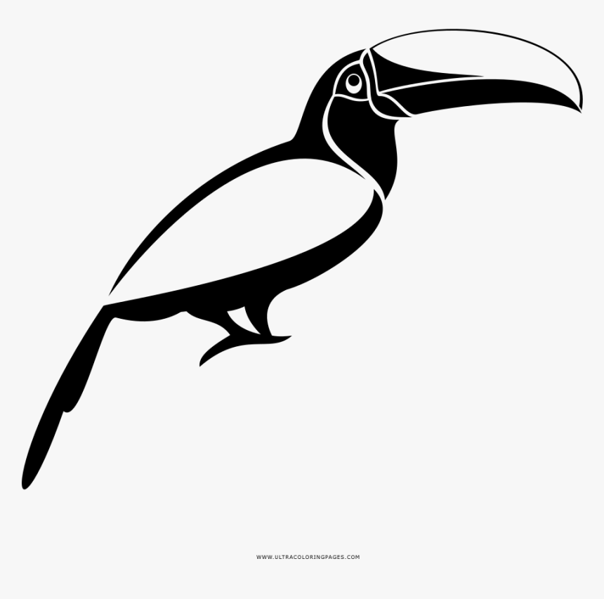 Toucan Coloring Pages - GetColoringPages.com | 853x860
