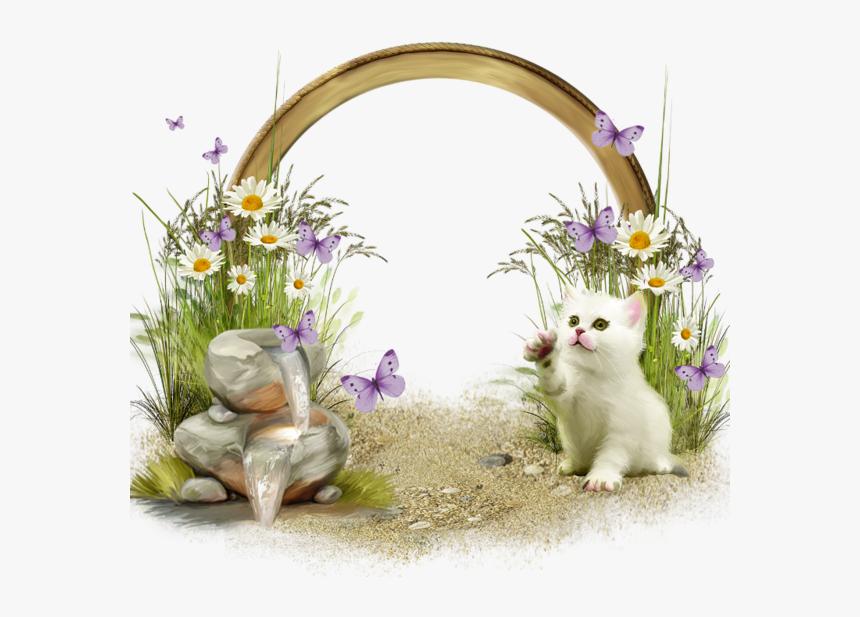 Transparent Easter Picture Frames , Png Download - Transparent Frame Kitten, Png Download, Free Download