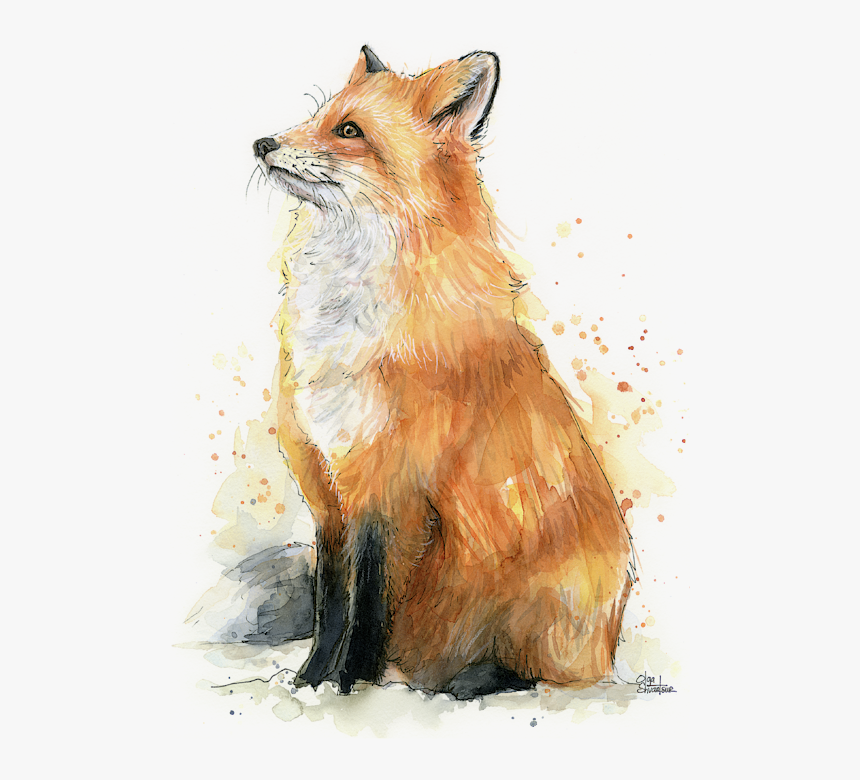 Fox Watercolor Painting, HD Png Download, Free Download