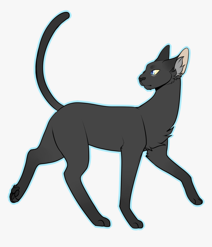 Simple Draw All The Cats Full Body Cat Drawing Hd Png Download Kindpng