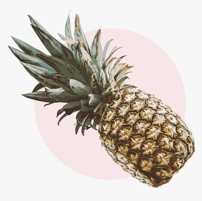 #pineapple #pineapple🍍 #vintage #aesthetic #retro - Pineapple Aesthetic, HD Png Download, Free Download