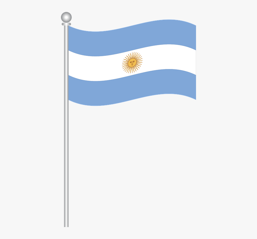 Flag Of Argentina Flag Argentina World Argentina Flag Vector