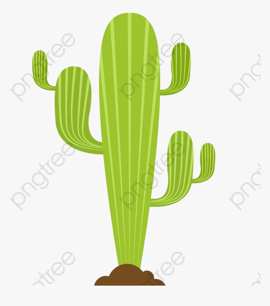 Transparent Succulent Clipart Cartoon Cactus Hd Png Download Kindpng