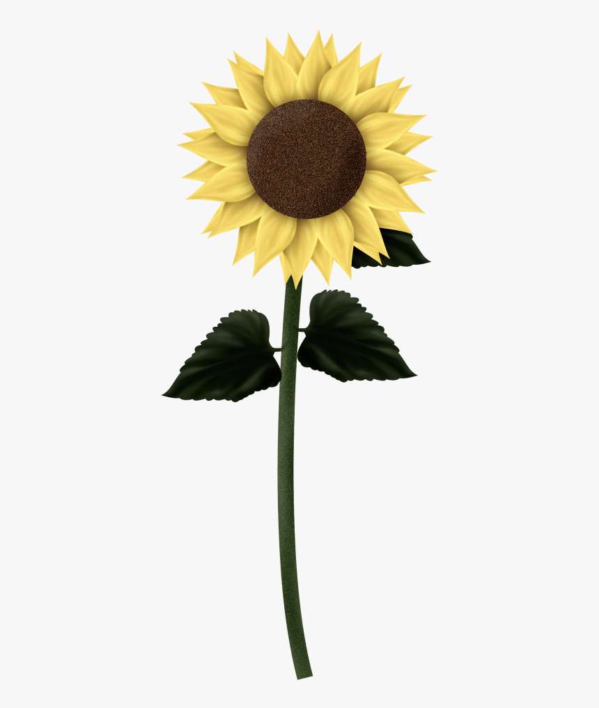 Download Sunflowers Png Clipart - Sunflower Clip Art Square Border, Transparent Png, Free Download