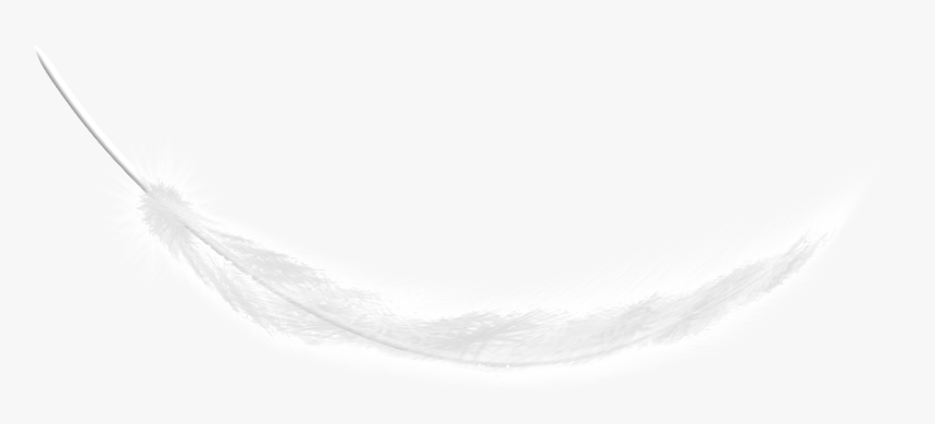This Graphics Is White Feathers Fall Transparent About - Darkness, HD Png Download, Free Download