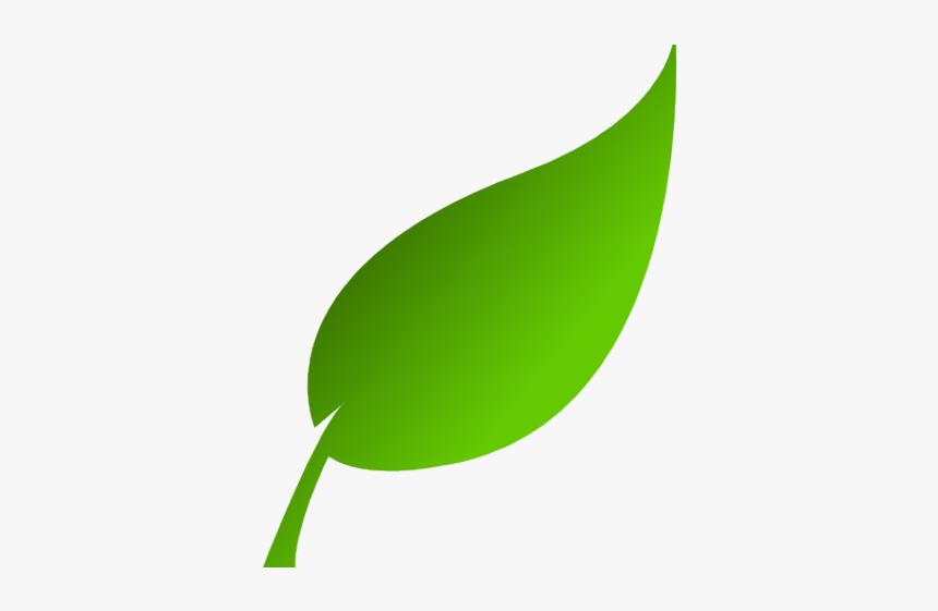 Green Leaves Clipart Tea Leaf Green Leaf Clipart Hd Png Download Kindpng