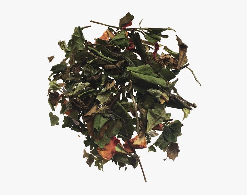 Lavender Rose Tea - Camouflage, HD Png Download, Free Download