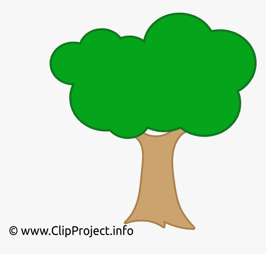 Arvore Vetor Desenho Clipart Png Download Baum Clipart