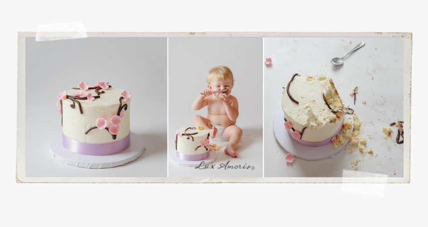 Magnificent Birthday Cake Smash Portrait By Baltimore Baby Photographer Personalised Birthday Cards Epsylily Jamesorg