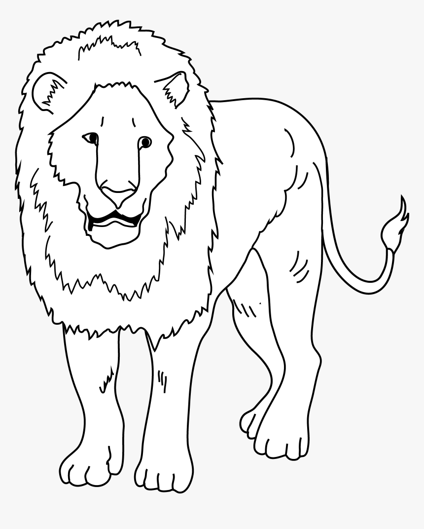 Lion Outline Png – The lion (panthera leo) is one of the big cats in the genus panthera and a member of the family in this gallery lion we have 58 free png images with transparent background.