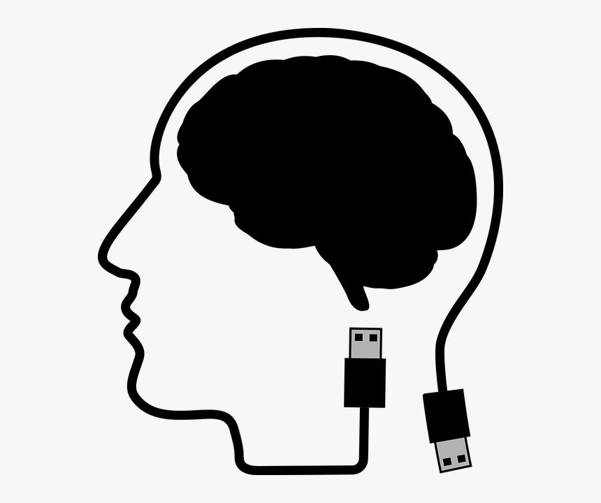 Cranium, Head, Human, Male, Man, People, Persons - Kepala Vektor Png, Transparent Png, Free Download