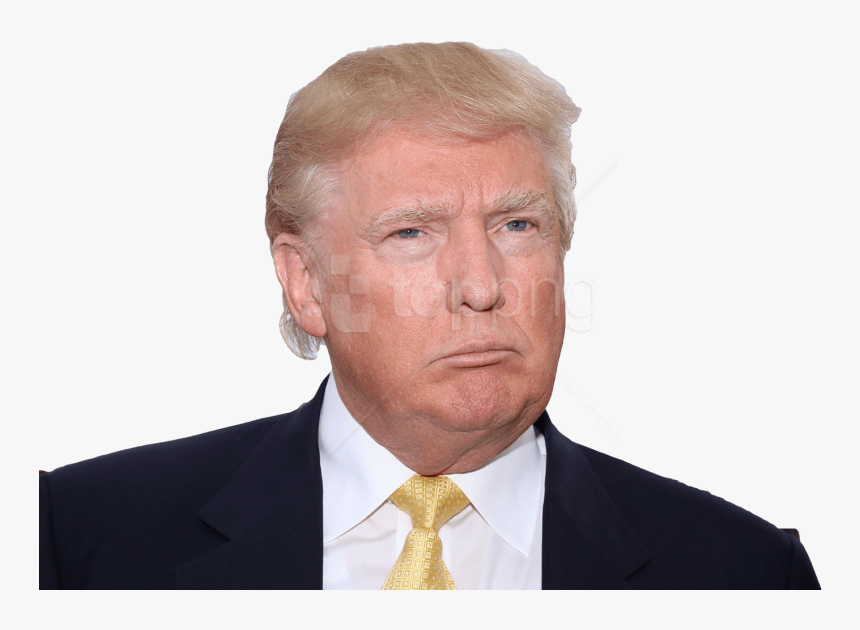Donald Trump Picture White Background, HD Png Download, Free Download
