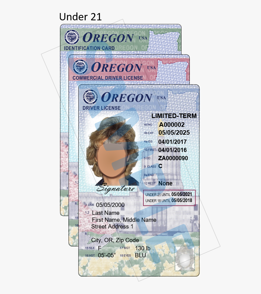 Photos Show Colorful New Oregon Driver License, Id - New Oregon Id Cards, HD Png Download, Free Download